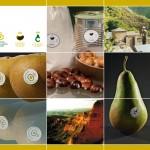 Parte del diseño desarrollado para el stand de la feria Fruit Attraction